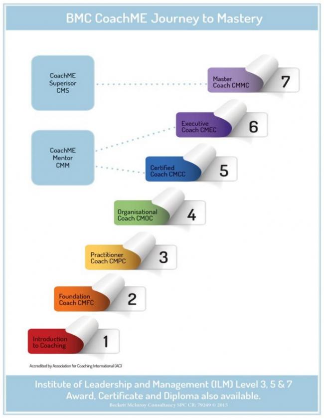 coachme_training_graph1